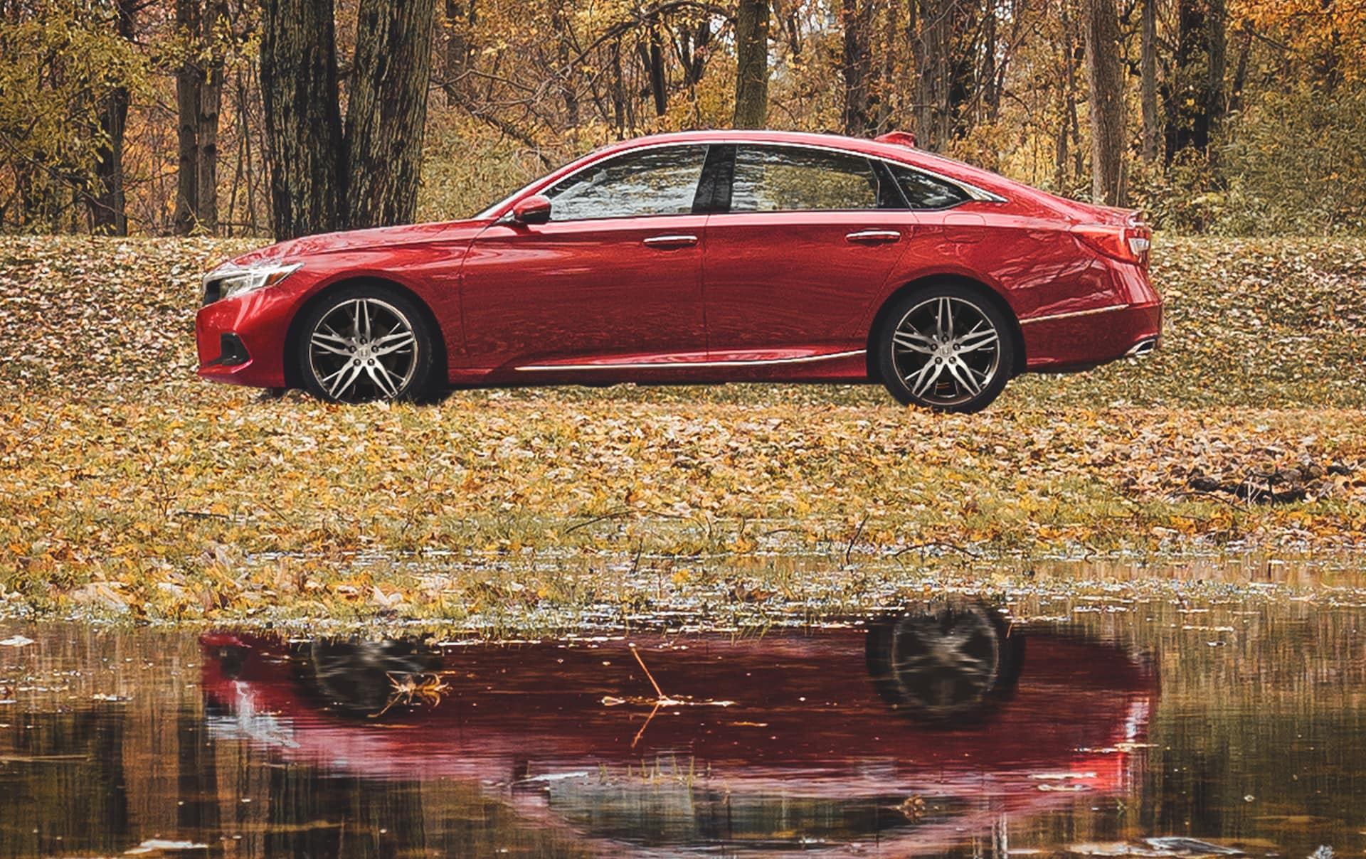 Driver-side profile view of the 2021 Honda Accord Touring 2.0T, shown in Radiant Red Metallic, stopped on a park drive next to a pond during autumn.