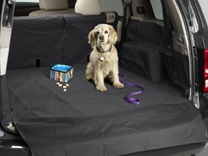 Perfect CARGO LINER